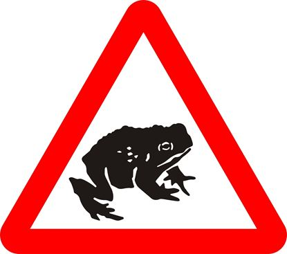 Migratory toad crossing ahead road sign